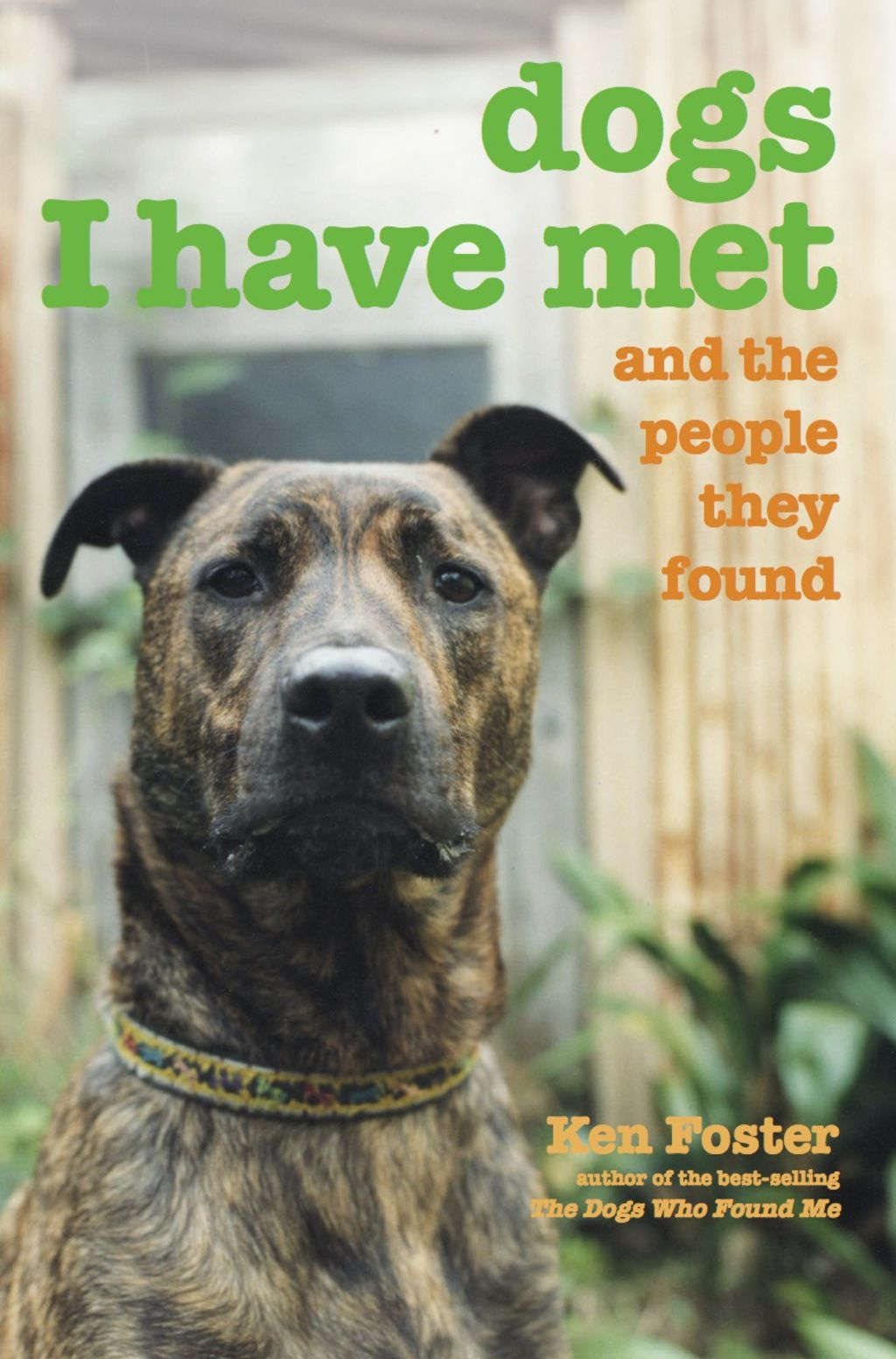 Dogs I Have Met Ebook Rental The Fosters Dogs Animal Books