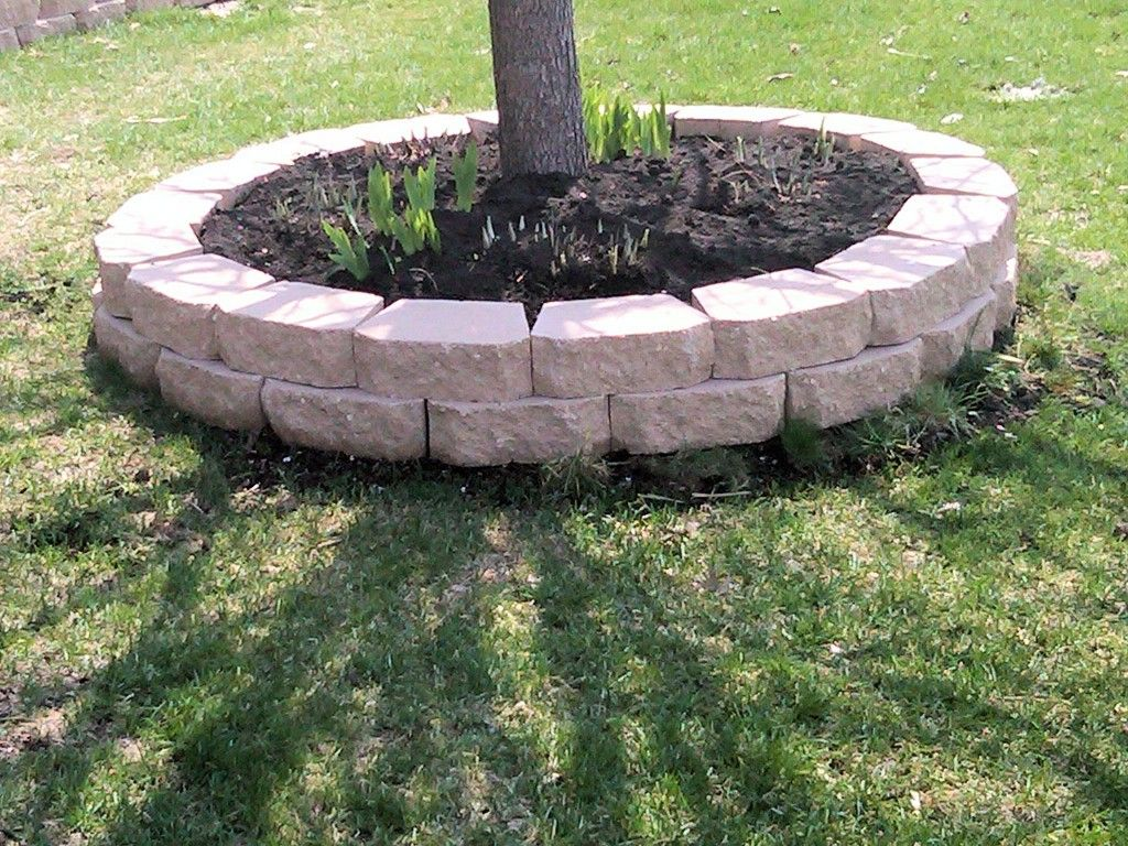 landscape bricks around tree....same color as on the house? Filled ...
