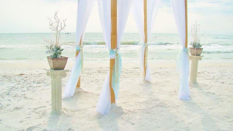Crystal Beach Tree Elegant Wedding