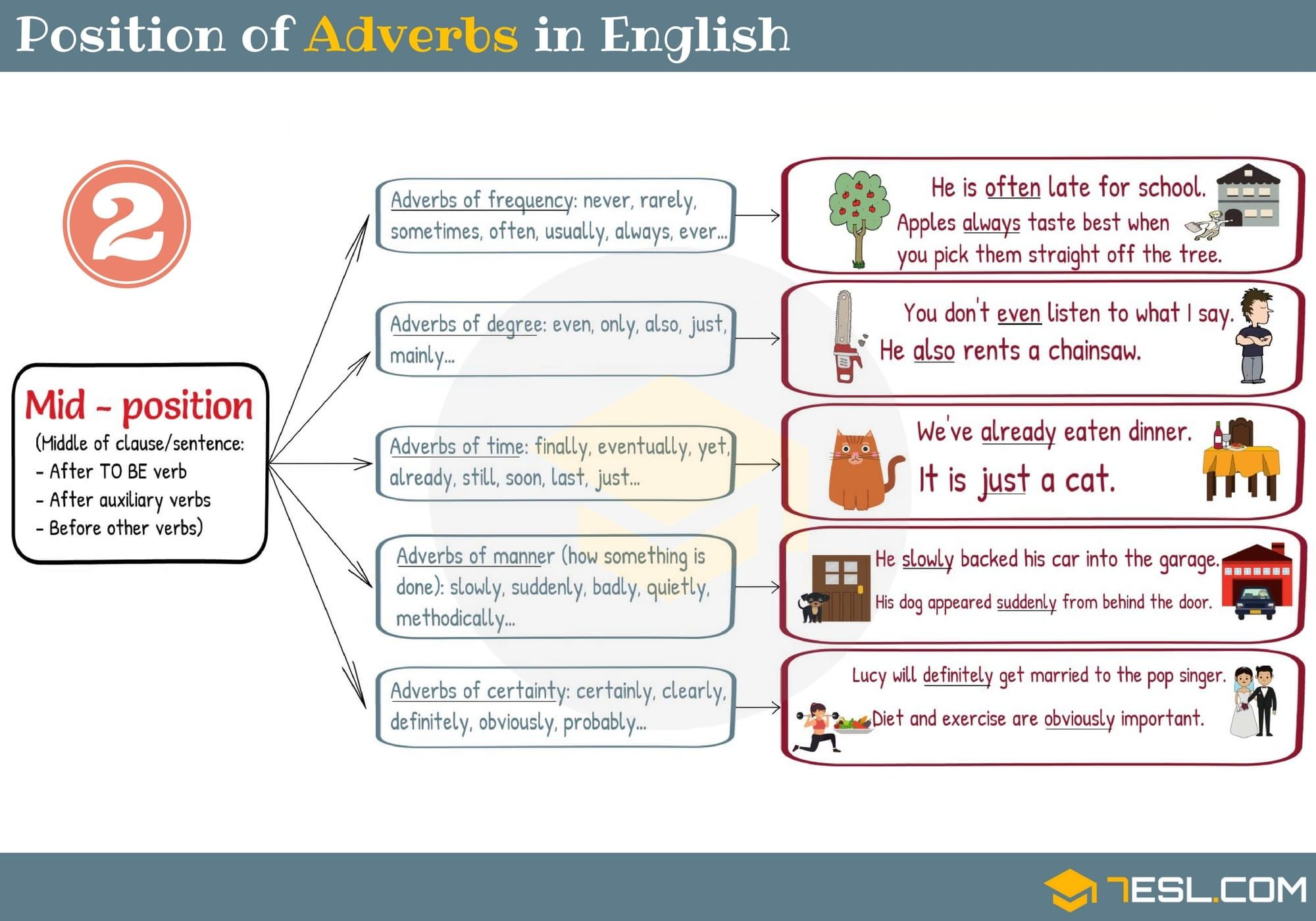 Position Of Adverbs In English Sentences 2 3