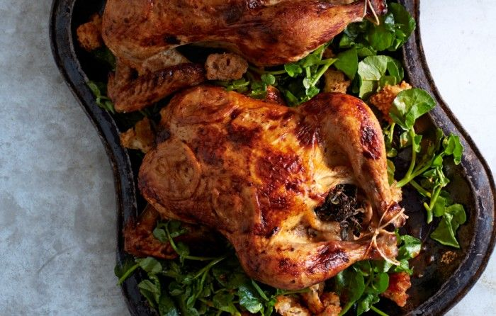 Buttermilk Brined Chicken With Cress And Bread Salad Recipe Recipe Brine Chicken Bread Salad Recipe Buttermilk Recipes
