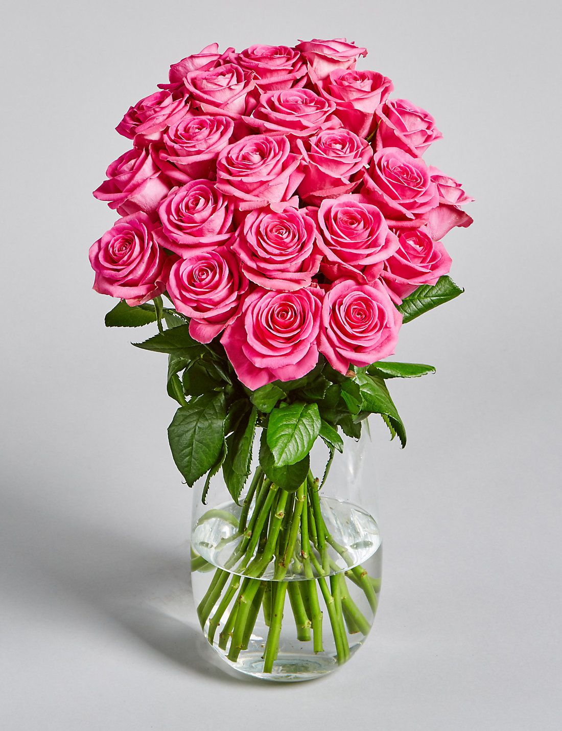 flowerdeliverytopunjab sendflowersjalandhar