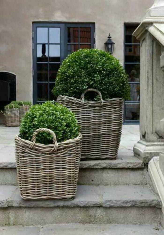 1001 ideas de decoraci n de jard n con maceteros grandes for Arbustos para macetas exterior