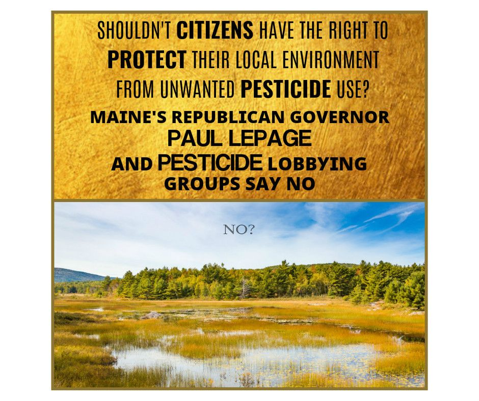 Pin by Leslie Inman on Lawn Pesticides are Dangerous
