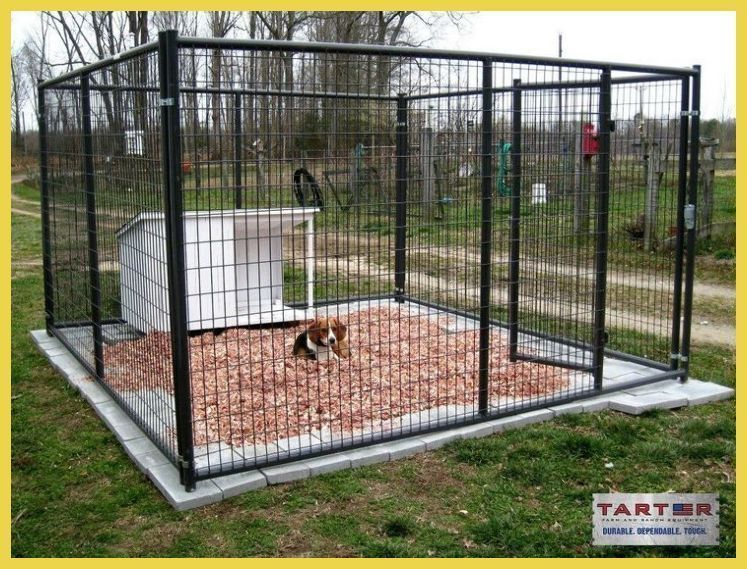 You Can Travel To My Personal Blog Site To Get More Most Up To Date Photo Dog Kennel Cage Boa In 2020 Building A Dog Kennel Luxury Dog Kennels Dog Kennel Outside