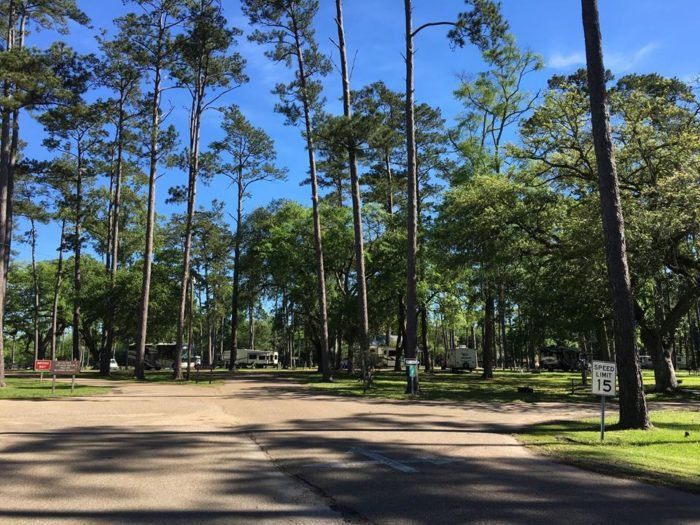 7 Peaceful Campgrounds Near New Orleans To Escape To When You Need
