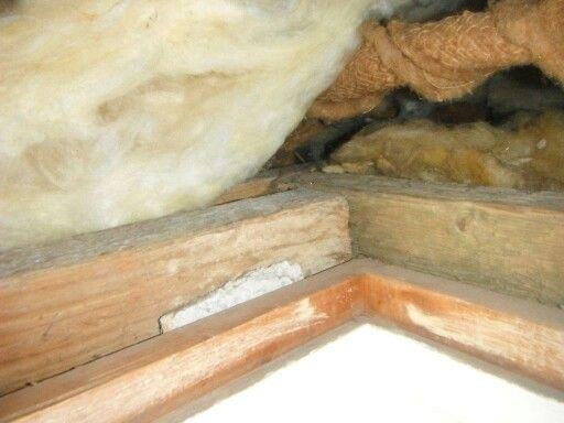 Asbestos Insulating Board Packer Used In A Loft Hatch Somerset Uk Asbestos Surveys Somerset