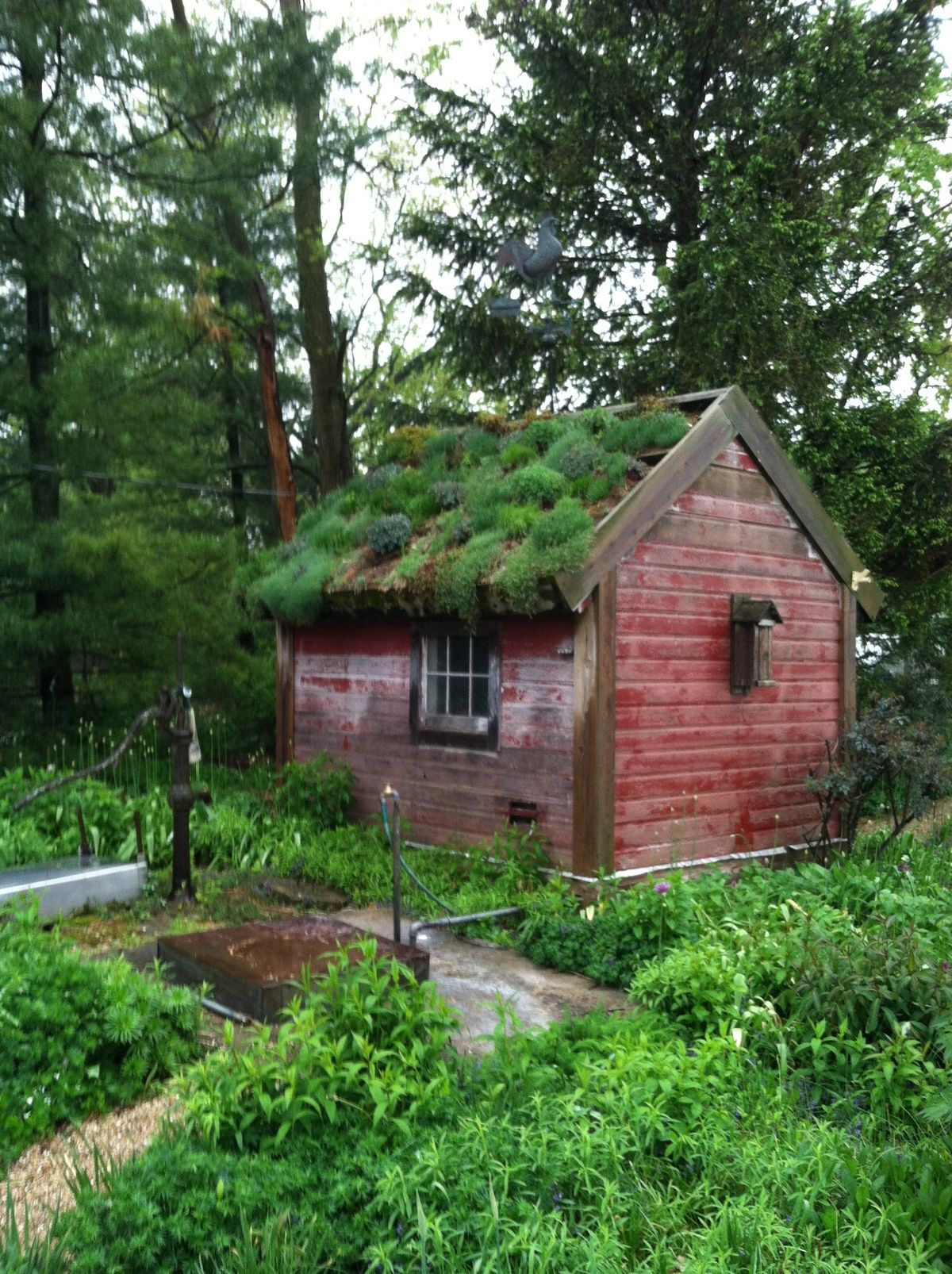 7ef24b73e9cca535176e4a22fa2db29e Jpg 1 200 1 606 Pixels Living Green Roof Garden Buildings Greenhouse Shed
