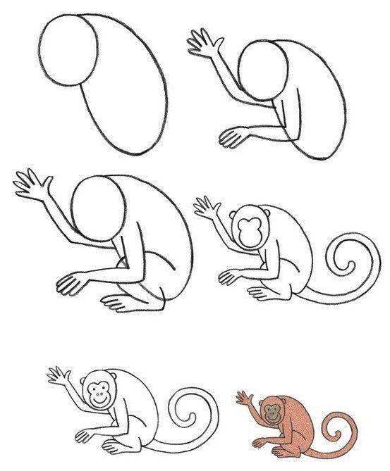 een aap tekenen met kleuters, stap voor stap   art - drawings, art