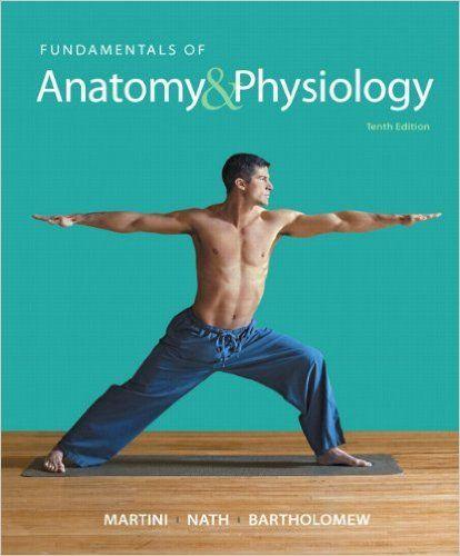 Fundamentals of Anatomy & Physiology 10th edition Martini Test Bank ...