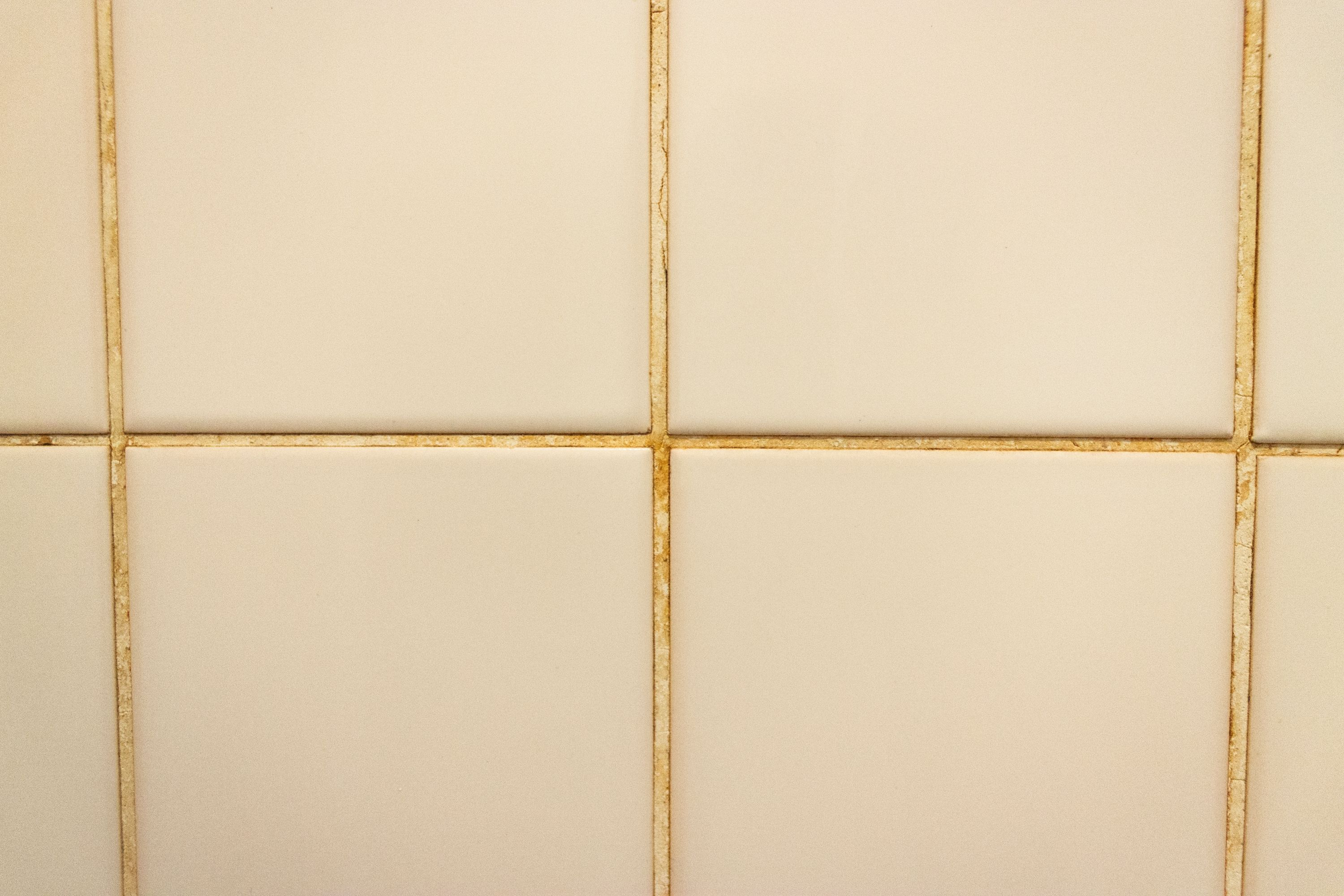 How to Kill Pink Mold on Shower Tile | Cleaning Tips | Pinterest ...