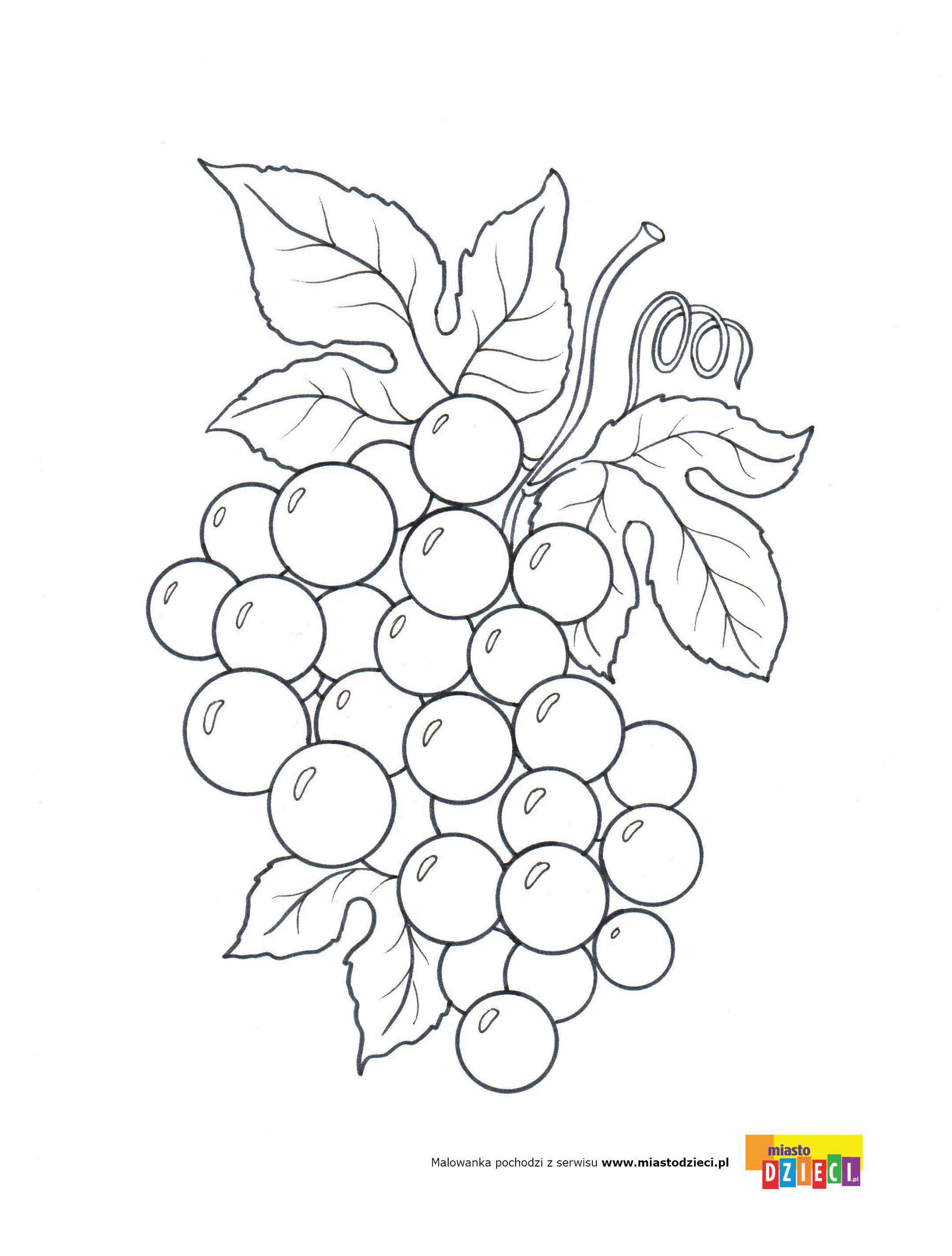 Winogrona Kolorowanki Malowanki Dla Dzieci Do Drukowania Poppy Wall Art Coloring Pages Coloring Books