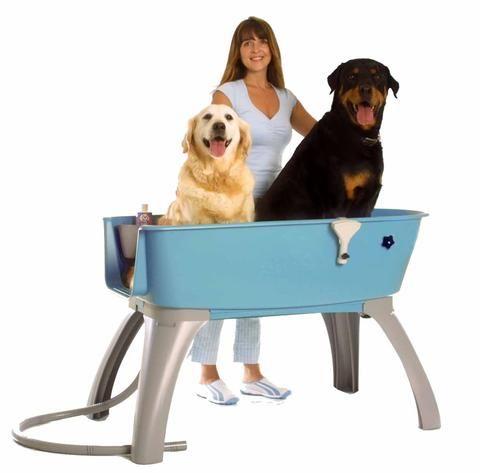 Elevated Dog Bath And Accessories Dog Bath Dog Boarding Near Me