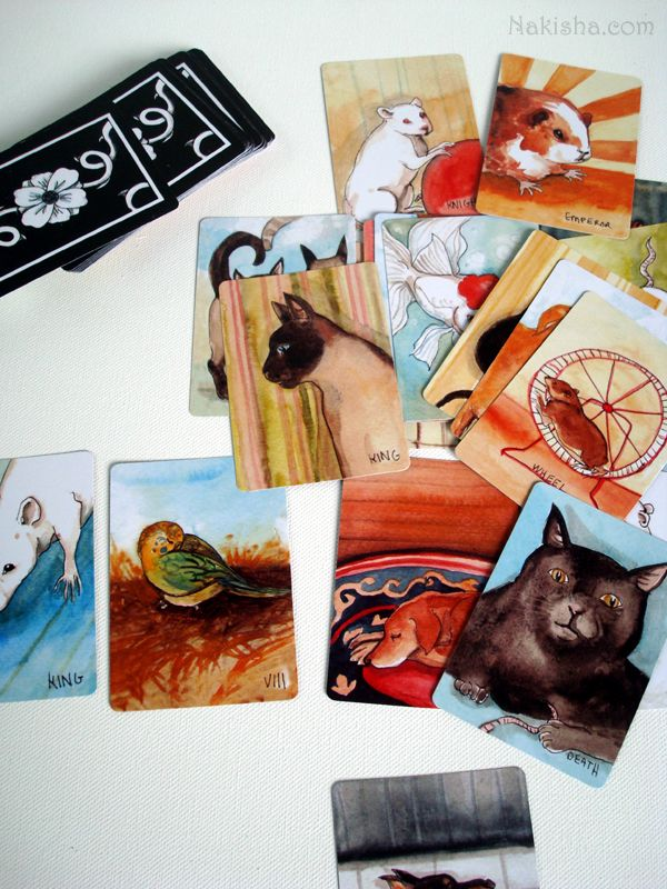 The BlueDogRose Tarot Is A Labor Of Love From The Maker Of