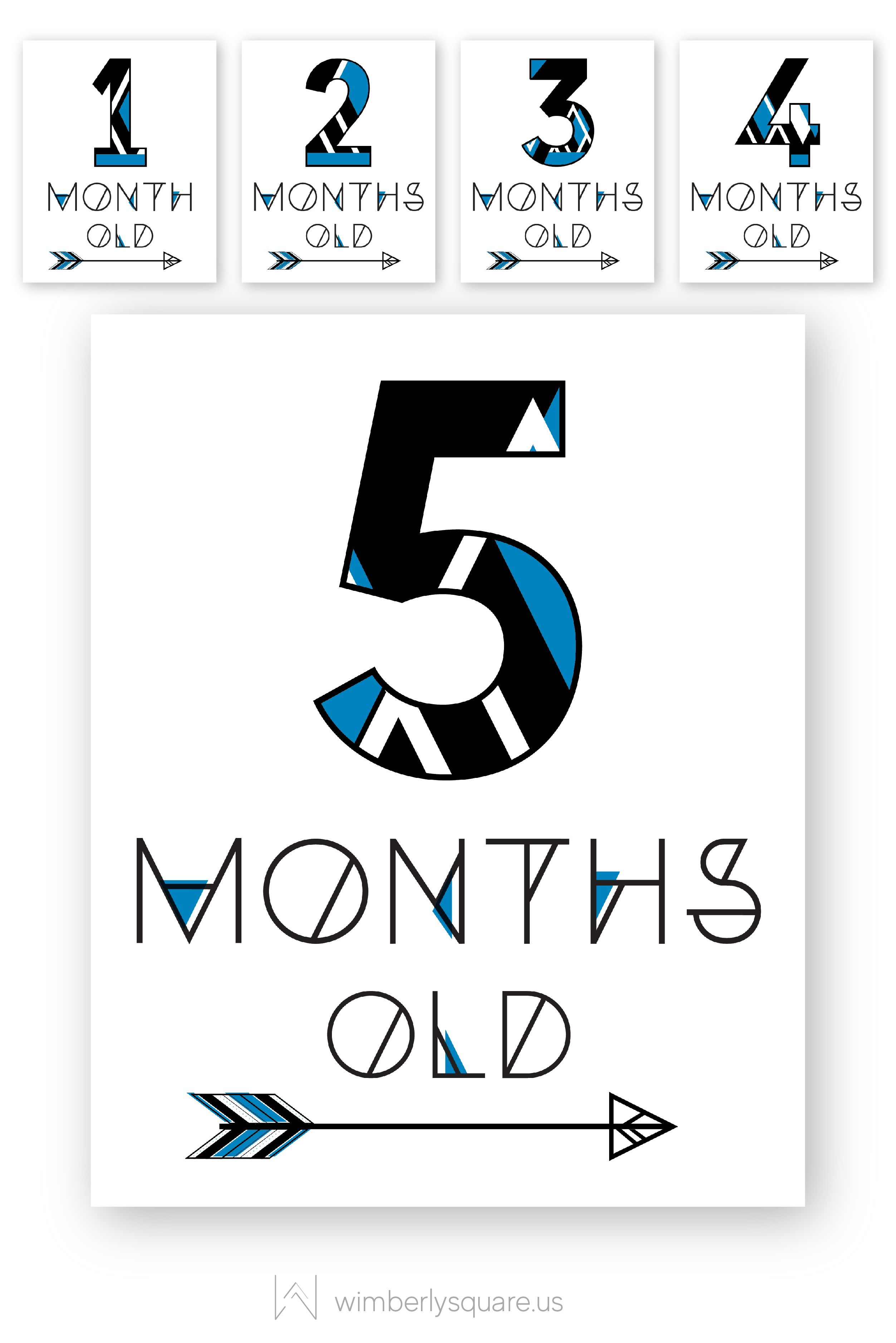 Baby Arrow Signs Baby Month Signs Baby Milestone Sign