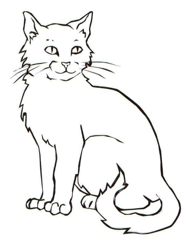 black cat coloring page # 1