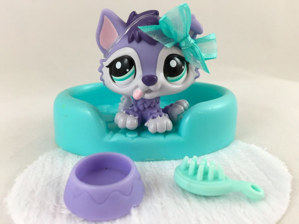 Littlest Pet Shop RARE Purple & White Husky Puppy #1810 w/Bed & Accessories #Hasbro