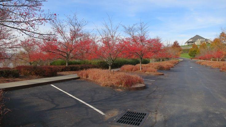 Parking Lot Dia Beacon Pinterest Parking Lot And Salem S Lot Landscape Design Landscape Architecture Meditation Garden