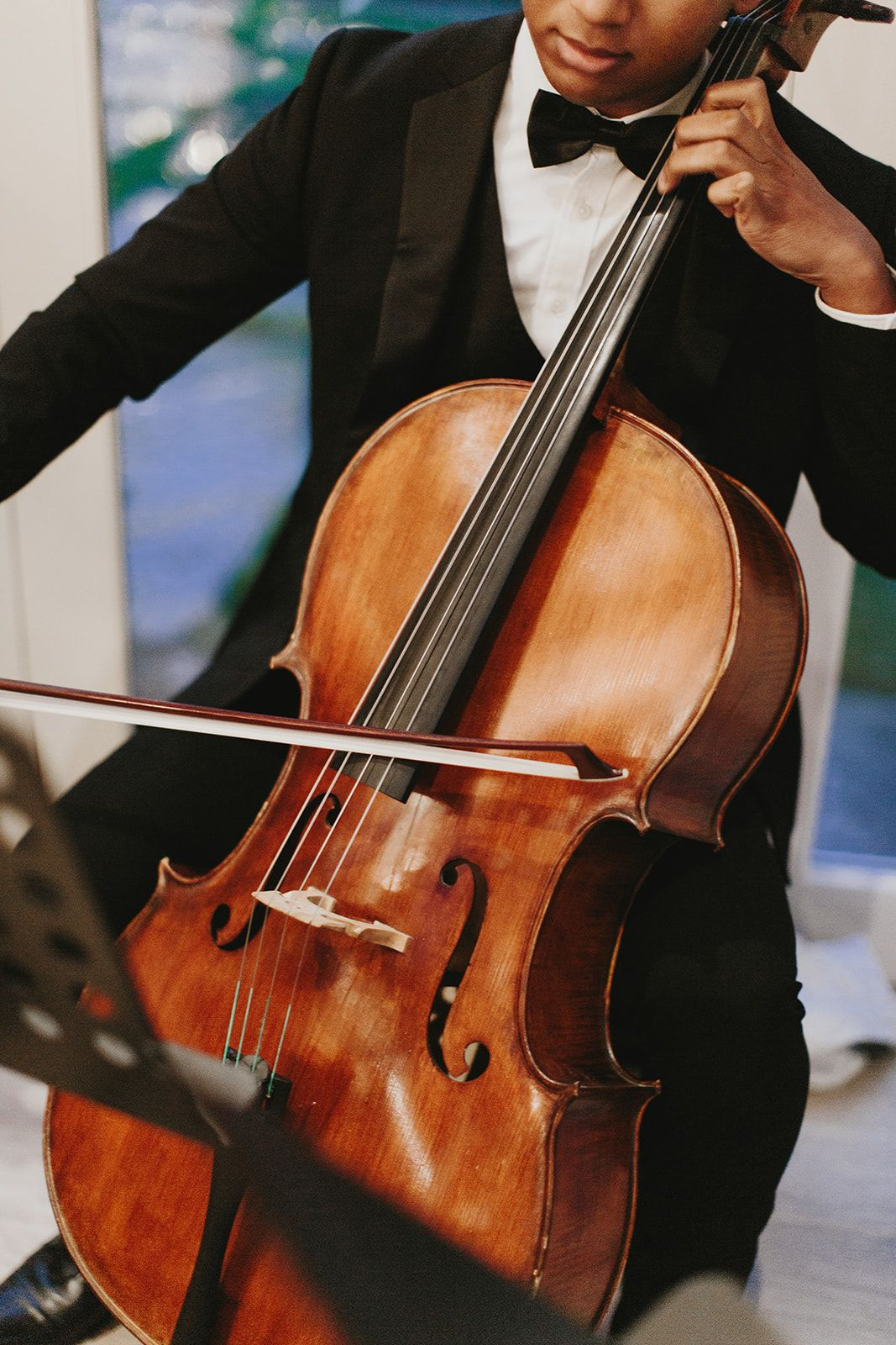 Wedding Cello Player in 2020 Small weddings ceremony