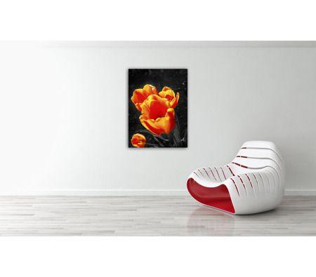 Obraz Tulipan Szarość z Pomarańczowym, Canvas