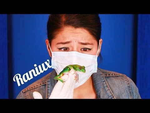 11 cosas sobre mi - Raniux (Ranita) - YouTube