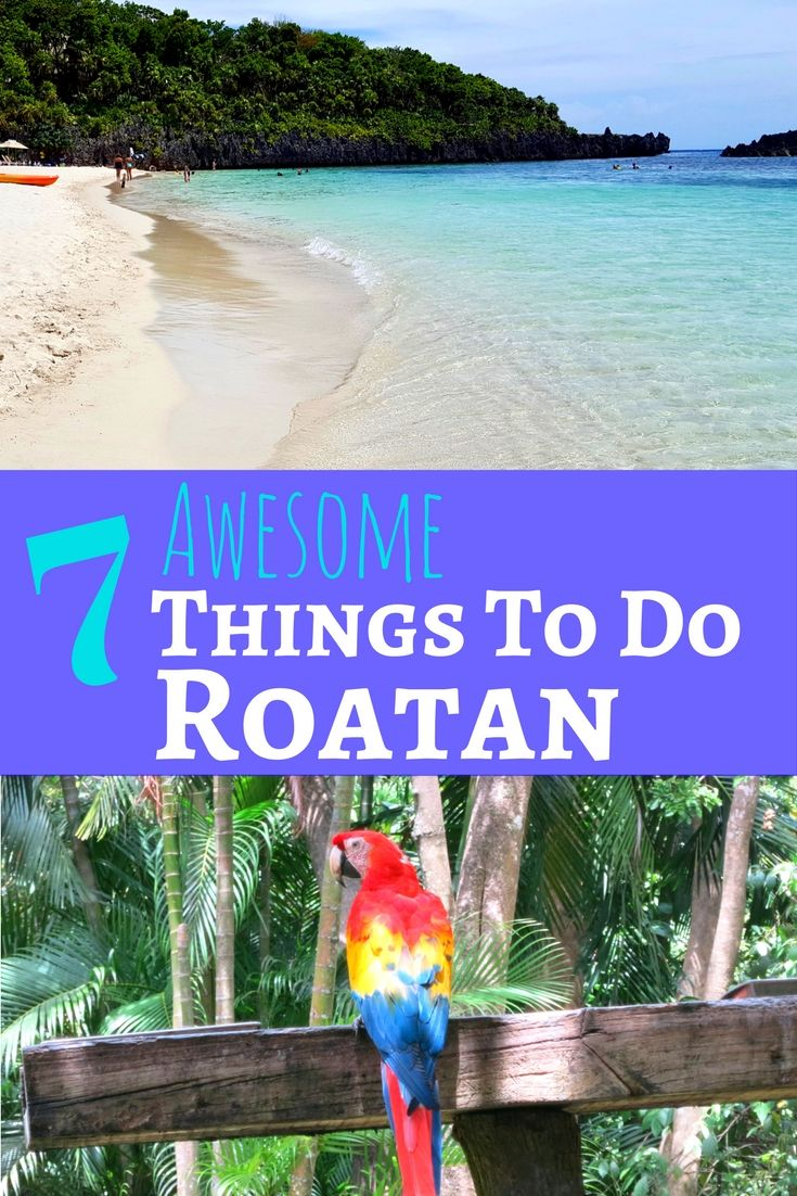 Awesome Things To Do In Roatan Honduras Roatan Honduras And - 10 things to see and do in honduras