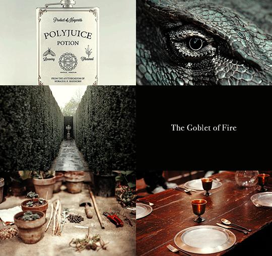 Harry Potter aesthetics: Yr 4