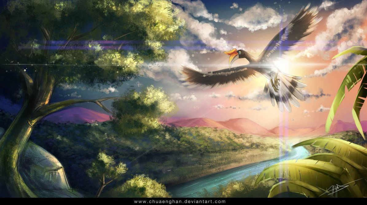 landscape - The Wings of Hope by chuaenghan