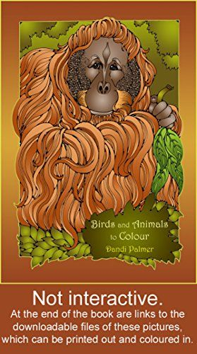Birds And Animals To Colour Coloring Books By Dandi Palmer