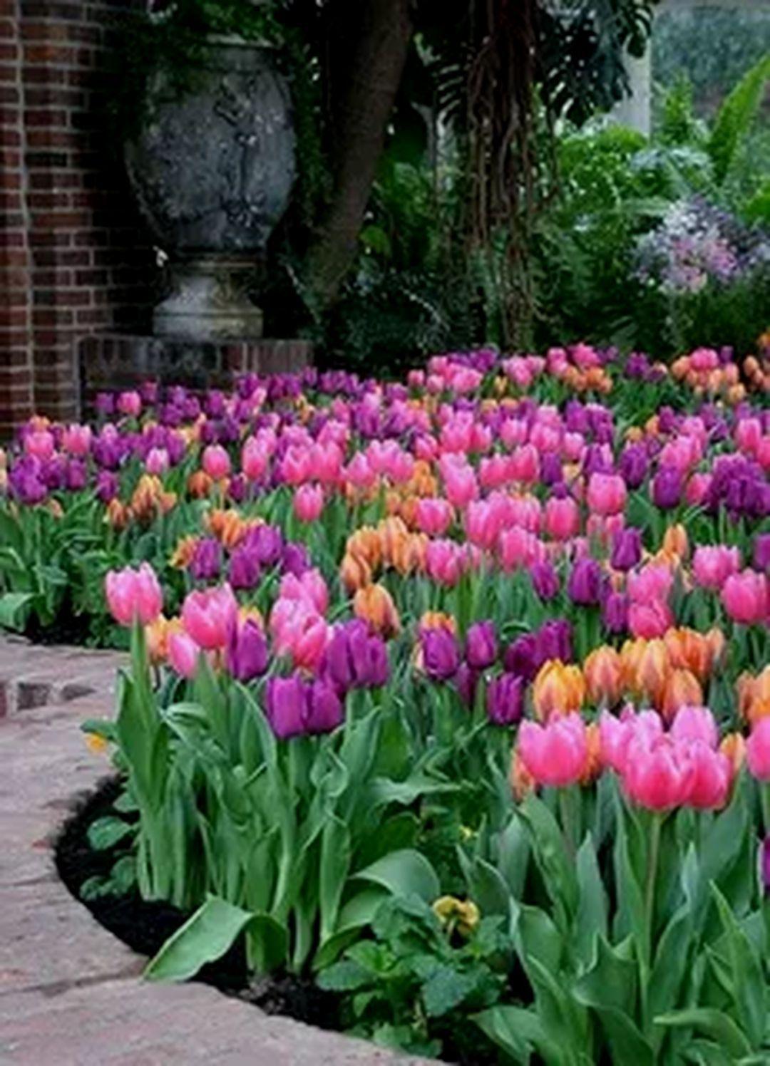 15 Beautiful Flower Garden Arrangement For Amazing Home Ideas Decor It S Beautiful Flowers Garden Tulips Arrangement Tulips Garden