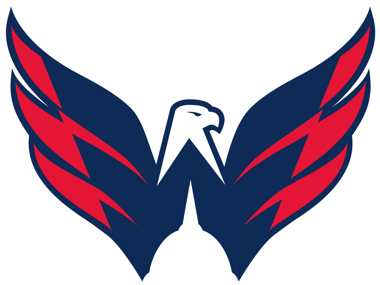 Image result for washington capitals logo