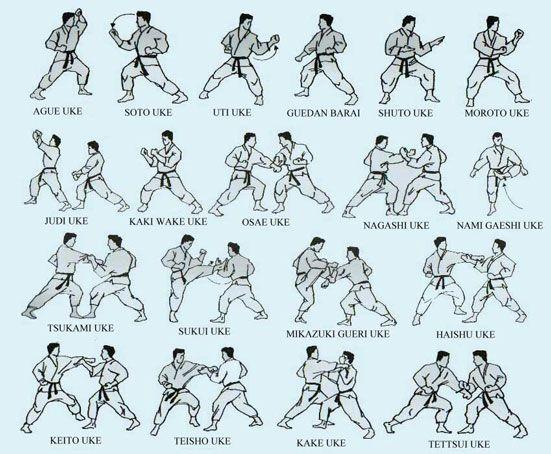 Shotokan Armas Bases E Defesas Do Karate Karate Treino De Artes Marciais Karate Shotokan