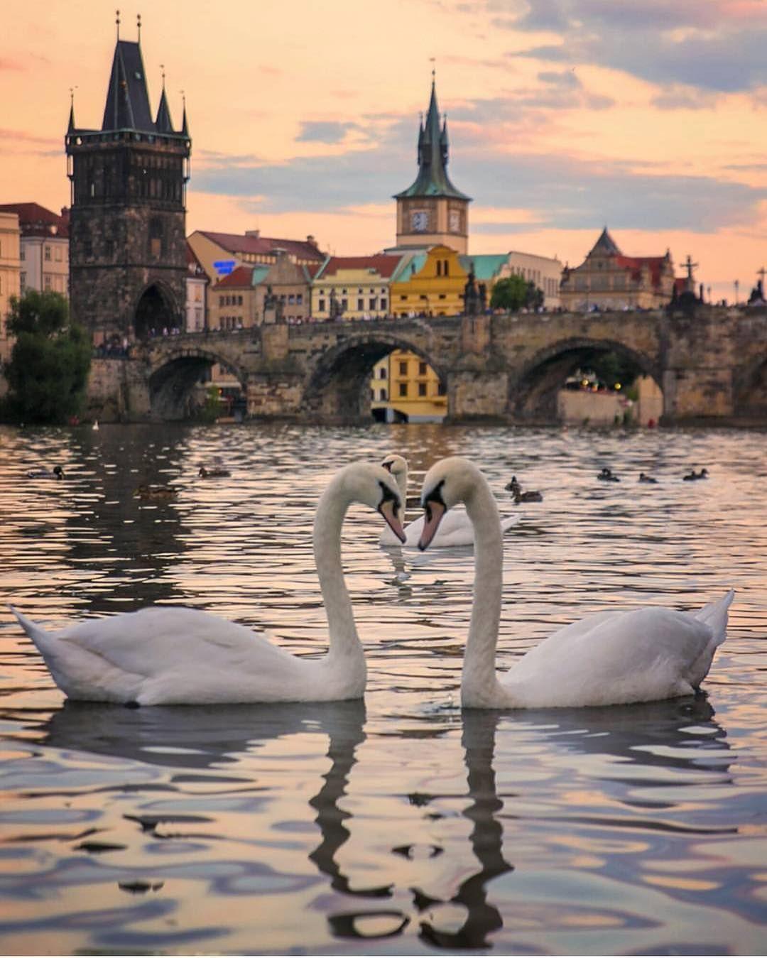 Praha Tšekin tasa valta dating