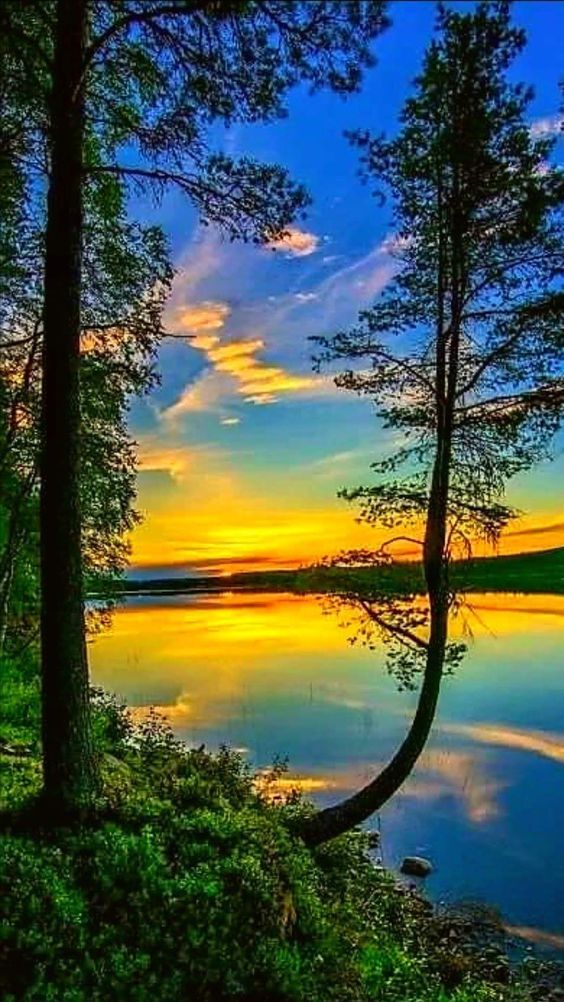 Nice Scenery Nature Photography Beautiful Landscapes Scenery