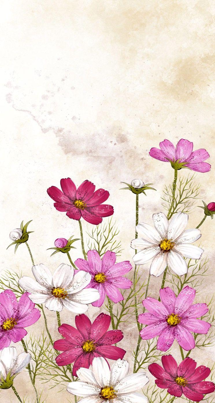 Sweet Cosmos Flower Painting Flower Painting Flower Art Floral Art