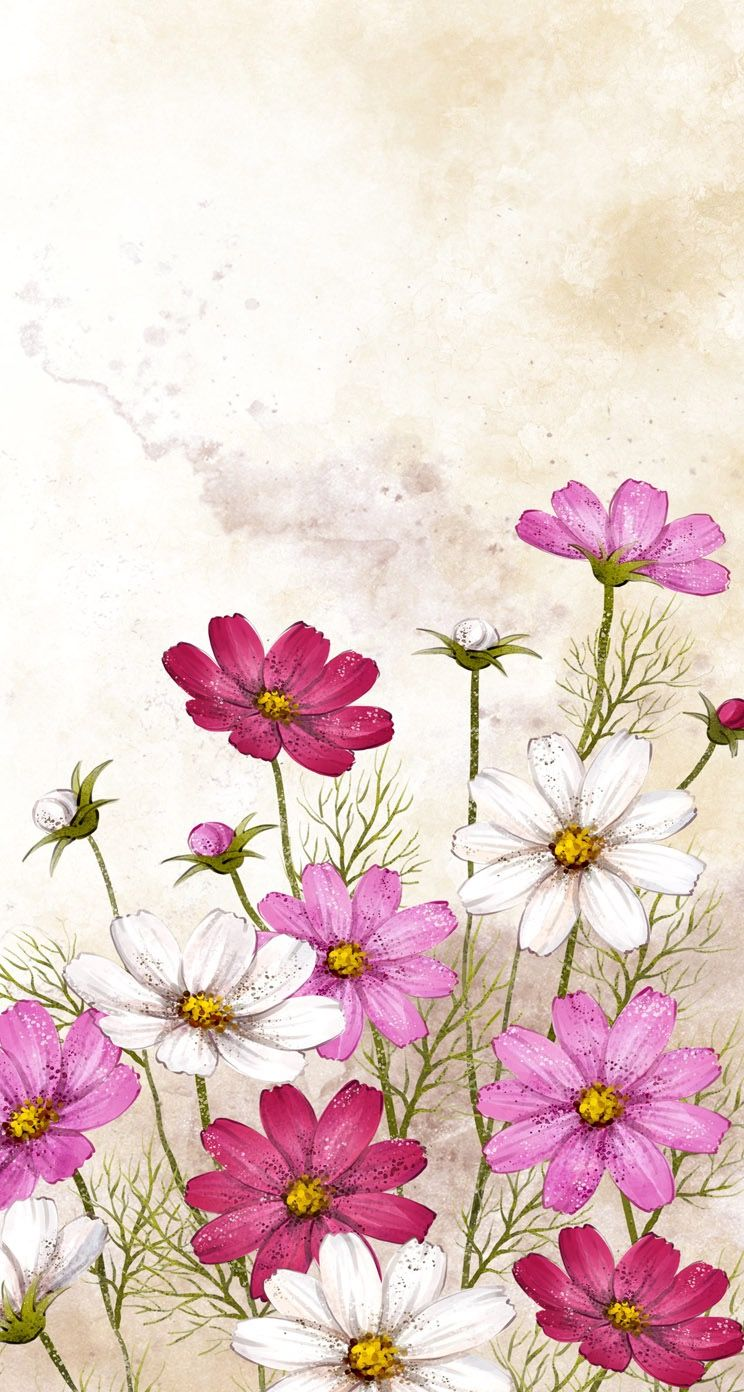 Sweet Cosmos Flower Painting In 2019 Painting Watercolor