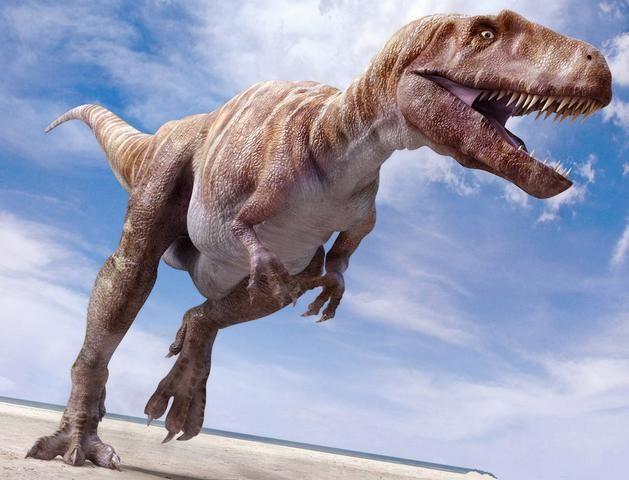 Megalosaurus m galosaure fiche sur ce dinosaure - Dinosaure marin carnivore ...