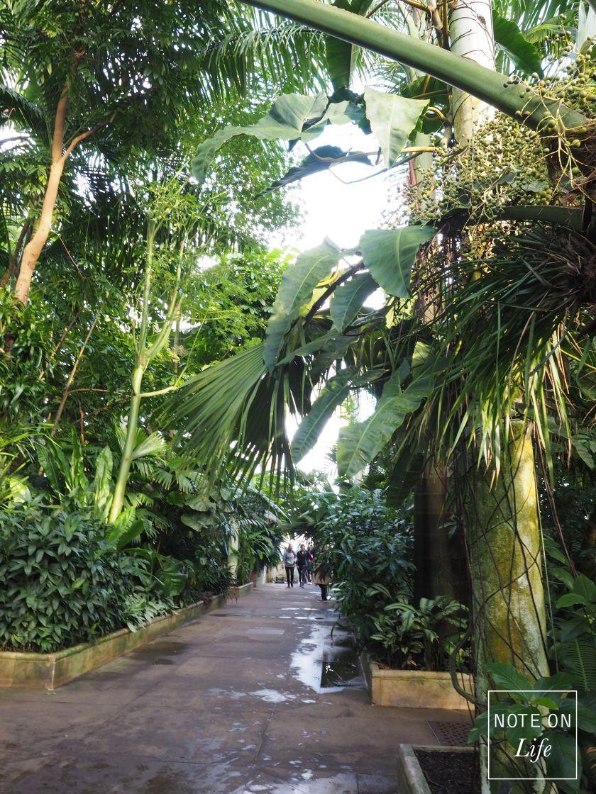 5a655baa9763244815c1d8c9563d4c33 - Palm House Kew Gardens London England