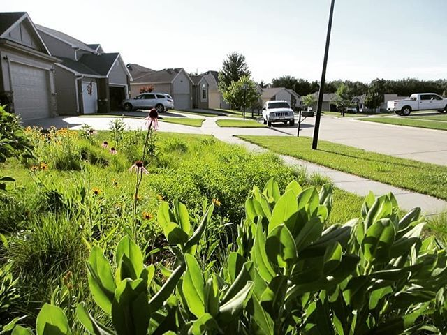 Our landscapes can be revolutions that wake us to the world. Bring on prairie interior design, prairie vodka, prairie chicken dance, prairie design build, prairie garden design, prairie planting design, prairie style design, prairie grass trail, prairie background, rain garden design, prairie glass design, prairie school design, prairie fence design, prairie woman, prairie house design,