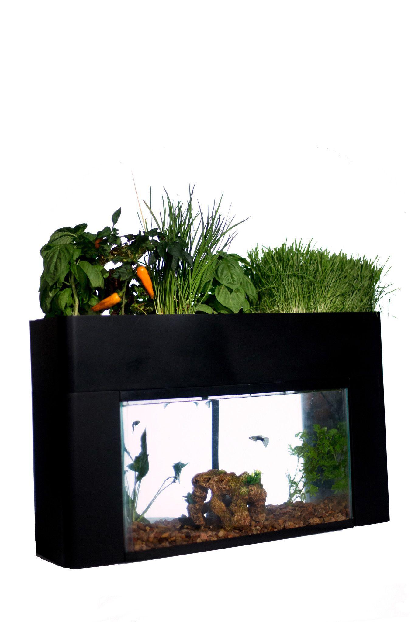 Garden In 2020 Aquaponic Gardening Aquaponics Diy 400 x 300