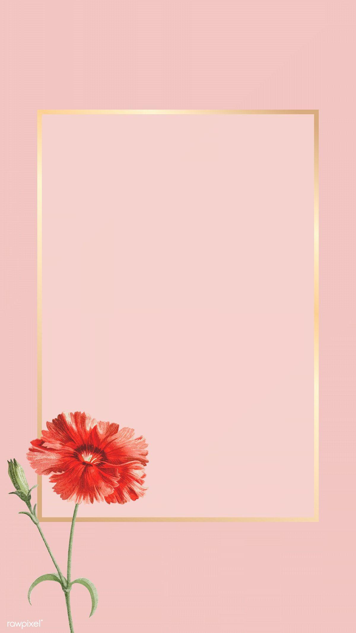 Download premium vector of Orange carnation flower element