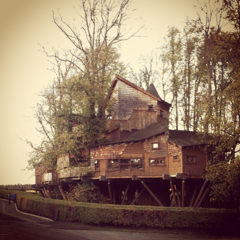 alnwick garden treehouse. | the Saplings? | Pinterest | Treehouse ...