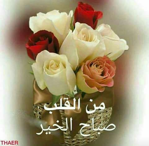 Good Morning صباح الخير Good Morning Greetings Good Day Wishes Morning Greeting