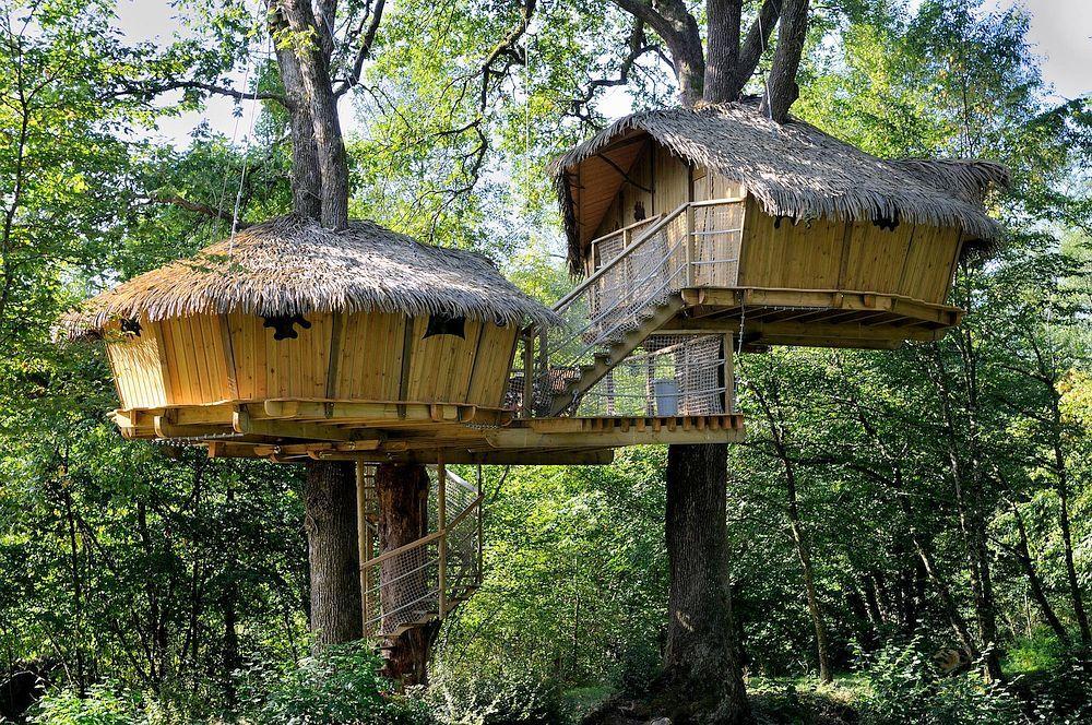 21 Amazing Treehouse Accommodations Tree House Cool Tree Houses Treehouse Hotel