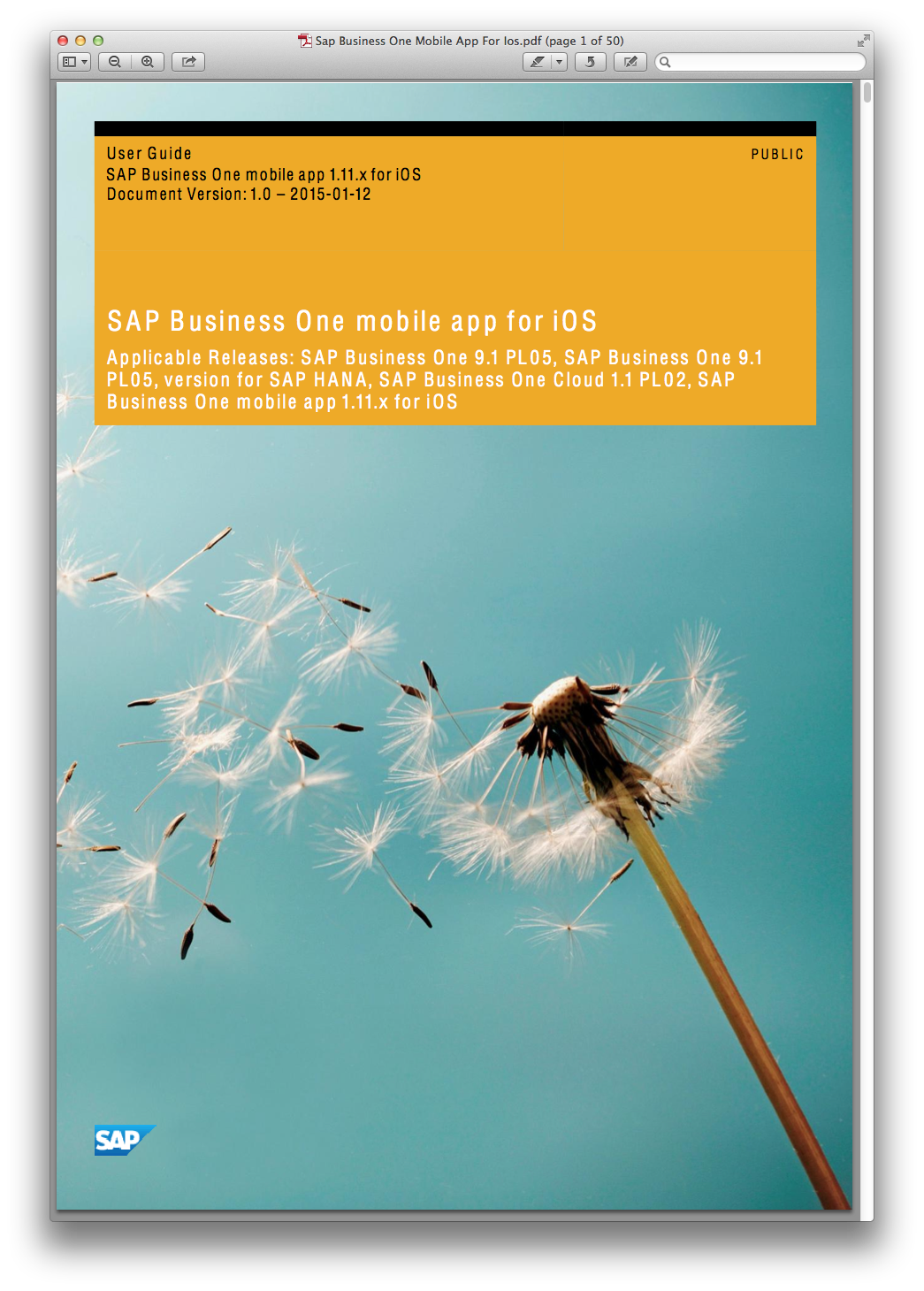 Sap Business One Mobile App For Ios.pdf.png (1045×1460)
