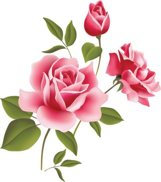 Roses pink rose art picture clipart inspiration clip art rose roses pink rose art picture clipart inspiration clip art mightylinksfo Image collections