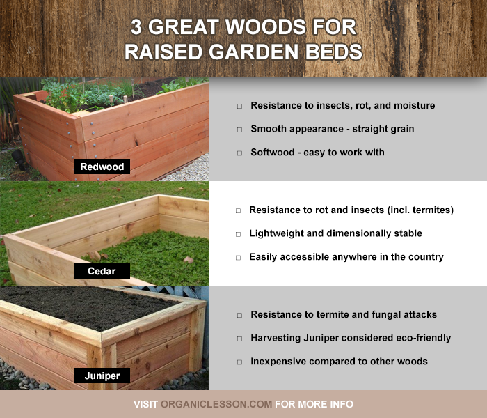 Three Great Choices Of Wood For Building Raised Garden