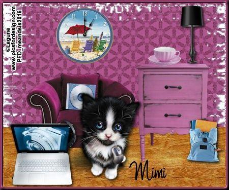 Kittymouse-meandsis2017Mimi