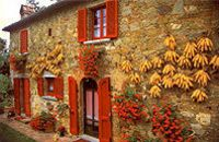 A Tuscan cottage. Isn't it delightful?