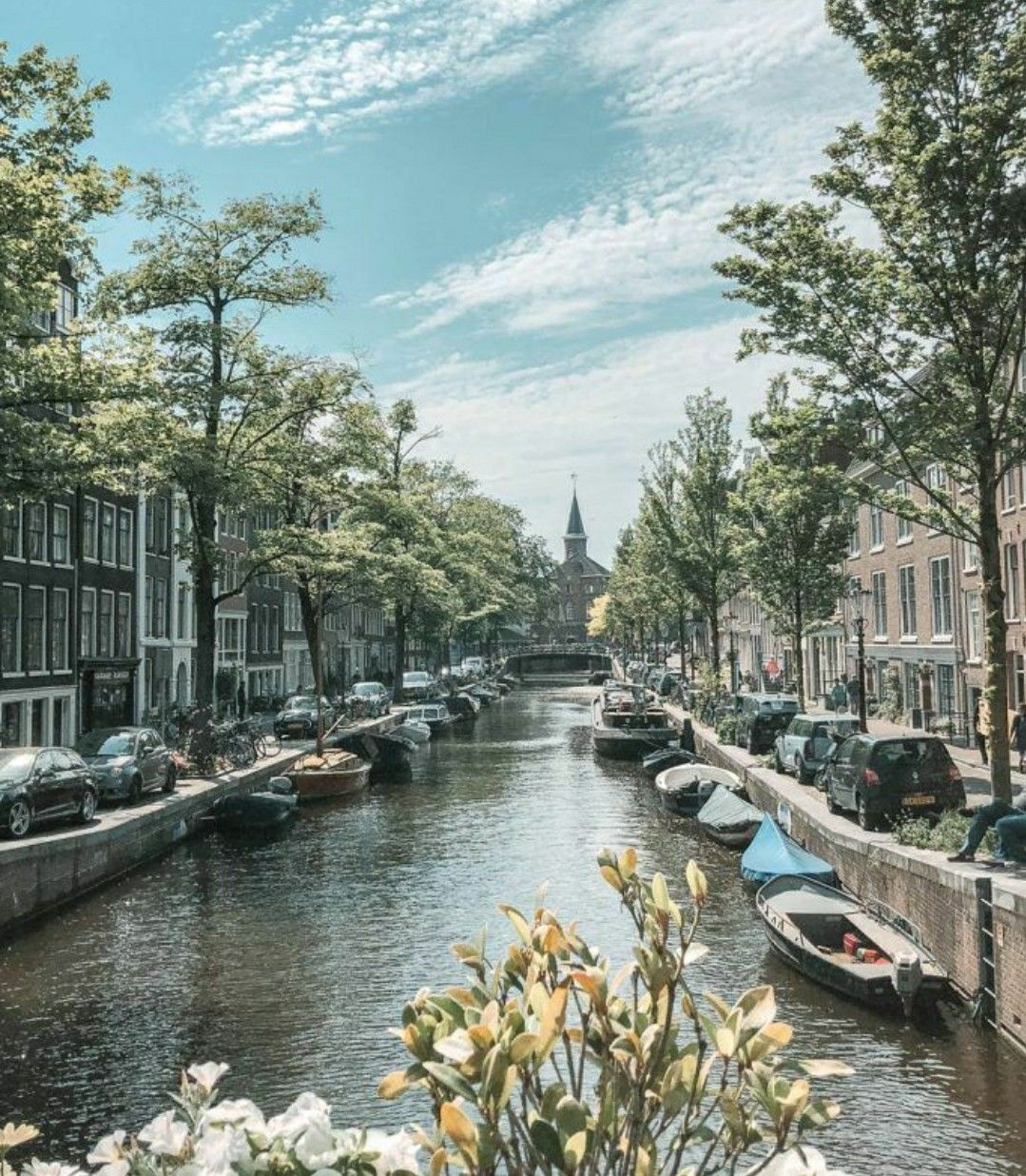 Visit Amsterdam and more #travel #holidays #vacation #amsterdam